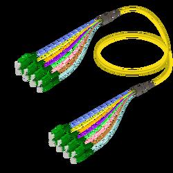 Samm Teknoloji - LC/APC-LC/APC | 8 Fibers Fanout | Single Mode G657.A2 | 3.0/0.9mm