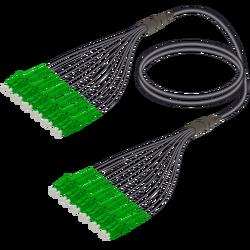 Samm Teknoloji - LC/APC-LC/APC | 12 Fiber Universal Fanout | Single Mode G657.A2 | 4.8/1.8mm