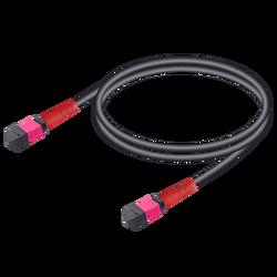 Samm Teknoloji - MTP Elite Dişi-Dişi Universal Patch Cord   Base-24   Multi Mode G651.OM4   4.8mm