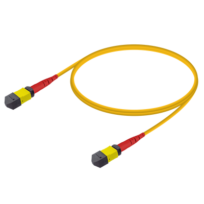 Samm Teknoloji - MTP Elite Dişi-Dişi Patch Cord | Base-24 | Single Mode G657.A2 | 3.0mm