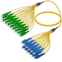 Samm Teknoloji - SC/APC-LC/UPC | 24 Fiber Fanout | Single Mode G657.A2 | 3.0/1.8mm