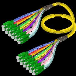 Samm Teknoloji - SC/APC-SC/APC | 12 Fiber Fanout | Single Mode G657.A2 | 3.0/0.9mm