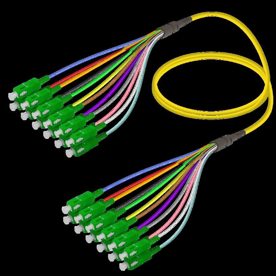 SC/APC-SC/APC | 12 Fibers Fanout | Single Mode G657.A2 | 3.0/0.9mm