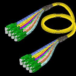 Samm Teknoloji - SC/APC-SC/APC | 8 Fibers Fanout | Single Mode G657.A2 | 3.0/0.9mm