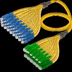 Samm Teknoloji - SC/UPC-LC/APC | 24 Fibers Fanout | Single Mode G657.A2 | 3.0/1.8mm
