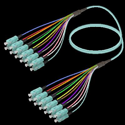 Samm Teknoloji - SC/UPC-SC/UPC | 12 Fibers Fanout | Multi Mode G651.OM3 | 3.0/0.9mm